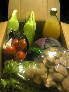 090713夏野菜~02.jpg